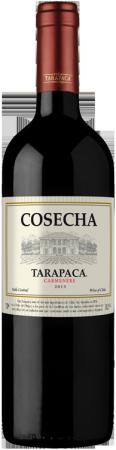Cosecha Tarapacá Carmenère